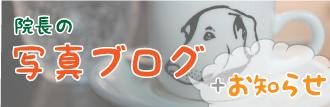 写真ブログ&お知らせ